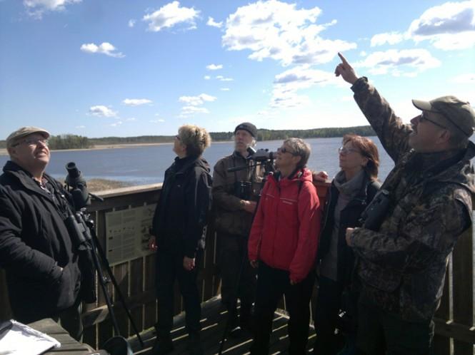 Janne Karlsson pekar ut något spännande som drar över tornet i Järnudda.