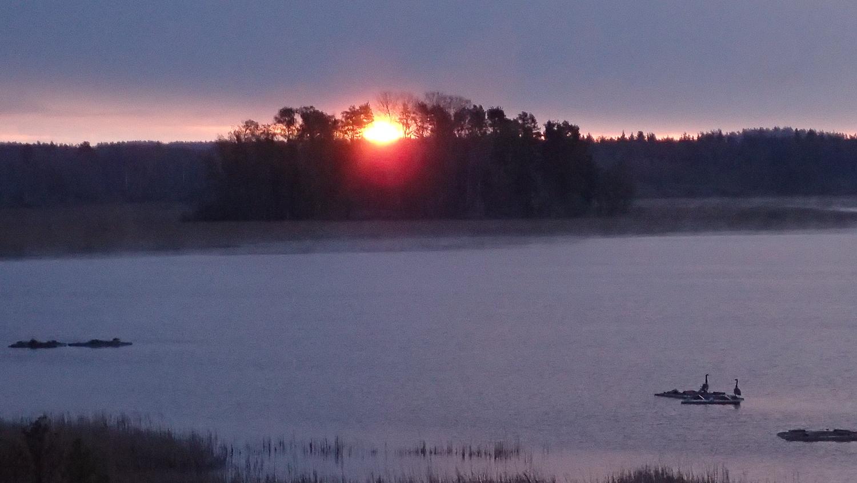 Soluppgång Lönnekullaviken Foto: Kenneth Rosén