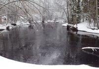 Silverån vinter Foto: Kenneth Rosén