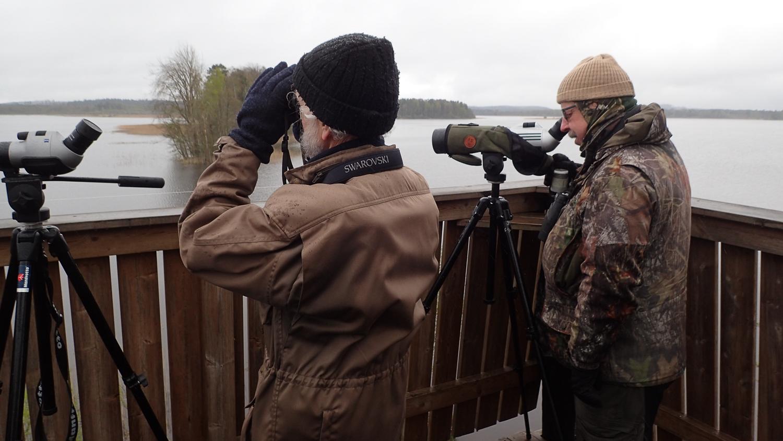 Åke Nilsson och Jan Karlsson spanar Foto : Kenneth Rosén